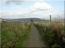 SD7513 : Affetside, footpath by Mike Faherty