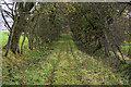 NZ0188 : Gallows Hill by Peter McDermott