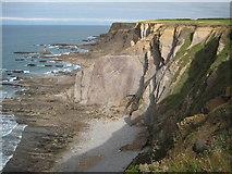 SS1905 : Cliffs below Efford Down by Philip Halling