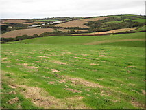 SS1900 : Farmland near Penhalt Farm by Philip Halling