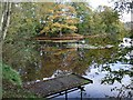 TQ3829 : Hosted Keynes lake by Nigel Freeman