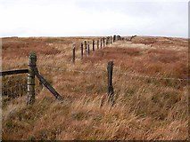NS6703 : Fence on Polskeoch Rig by Oliver Dixon