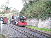 SH4862 : Caernarfon Railway station by John Firth
