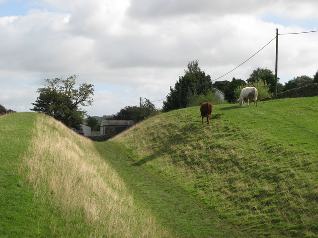 The north defensive ditch of Hadrian's Wall east of Gilsland (2)