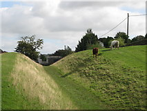 NY6366 : The north defensive ditch of Hadrian's Wall east of Gilsland (2) by Mike Quinn