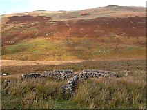 NS7304 : Sheepfold in the Scaur Water Glen by Oliver Dixon