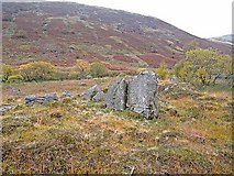 NS7800 : Rocks and scrub in the floor of the Scaur Water Glen by Oliver Dixon