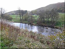 NS8206 : River Nith near Glengenny Wood by Oliver Dixon