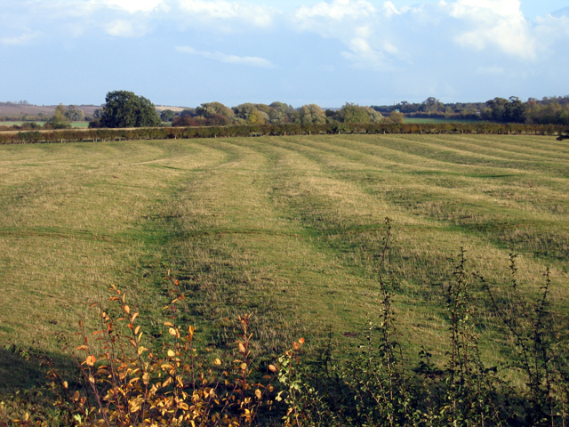 Medieval ridge and furrow, Catworth, Hunts