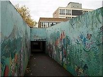 ST5516 : Mural, Red Lion lane, Yeovil by Derek Harper