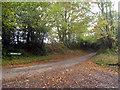 TQ5324 : Lane junction near Hadlow Down by Oast House Archive