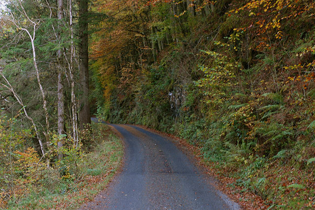 Minor road following the Afon Wen north
