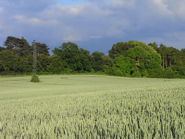 Farmland, Kidmore End