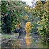 SK0220 : Trent and Mersey canal towards Colwich, Staffordshire by Roger  Kidd