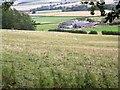 NN9324 : Braes of Fowlis by Maigheach-gheal
