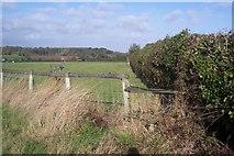 TR0253 : Stile near a horses paddock by David Anstiss