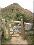 SX1597 : Gate on the South West Coast Path by Philip Halling