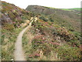 SX1497 : Coast path on Castle Point by Philip Halling