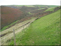 SX1497 : Cleave Valley by Philip Halling