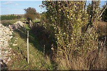 TR0863 : Rubble lined footpath to Seasalter Lane by David Anstiss