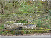 SK2362 : Mires Trough, Birchover by Peter Barr
