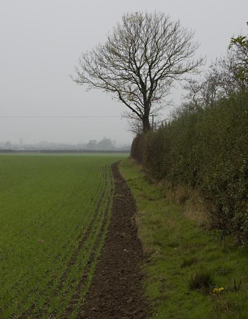 Hungerhills, near Bilton