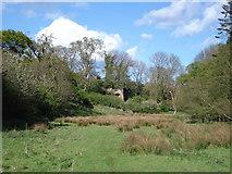 NU0541 : Lime Kiln in Mount Hooley Dene by Rodney Clark