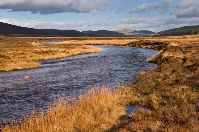 River Muick