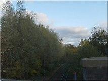 SO9496 : Metro View by Gordon Griffiths