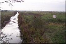 TQ6974 : Dyke in Shorne Marshes by David Anstiss