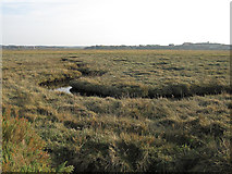 TG0345 : Saltmarsh in Cley Channel by Hugh Venables