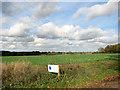 TM4094 : Oilseed rape crop in field east of Beccles Road by Evelyn Simak