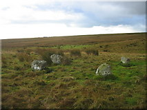 NY8274 : The Goatstones by Les Hull