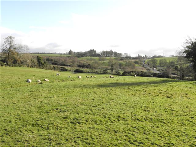 Drumnakilly Townland