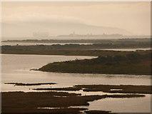 SZ3394 : Lymington: marshy coast and misty background by Chris Downer