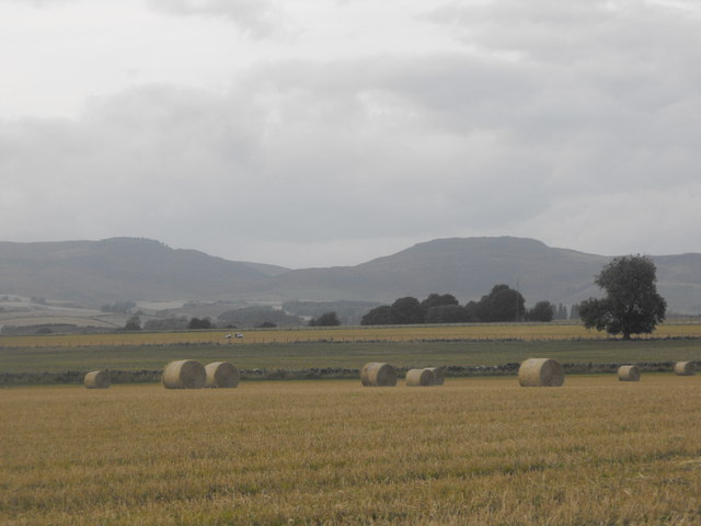 Looking west into Tullybelton