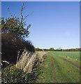TA2033 : Bridleway to Sproatley by Paul Harrop