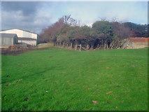 SO9338 : Walled garden greenhouse site by Trevor Rickard