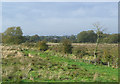 SJ9320 : Rough grazing near Stafford by Roger  Kidd
