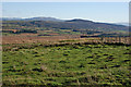 SH6933 : Rough grazing near Ty-cerrig by Nigel Brown