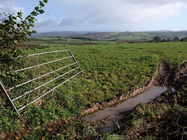 Gate and field, Venton Chapel Cross