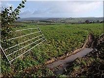 SX5856 : Gate and field, Venton Chapel Cross by Derek Harper