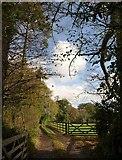 SX5756 : Track to Parkside Farm by Derek Harper