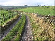 SK0779 : Footpath towards A6 road near Barmoor Clough by Chris Wimbush