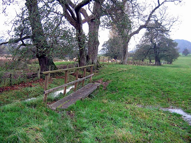 Footbridge across wet ground