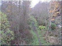 NT3461 : Old railway footpath by M J Richardson