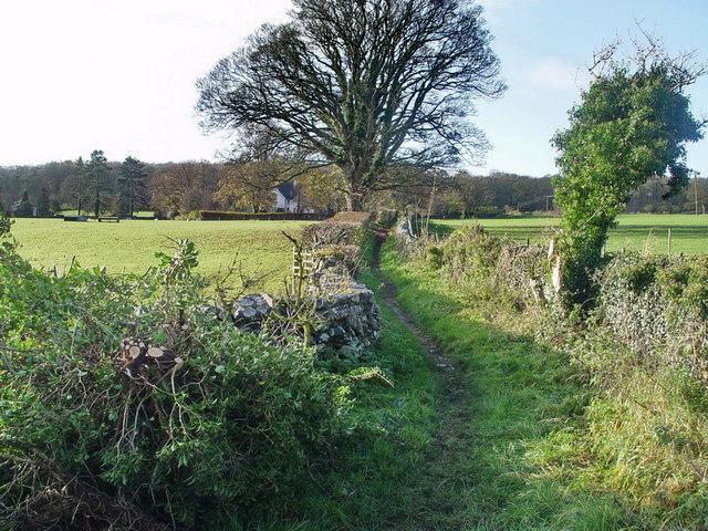 Bridleway at Beetham