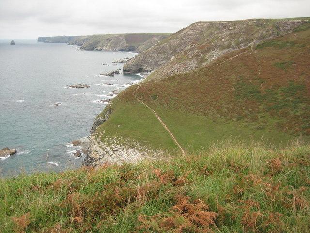 Coast path near Tregragon