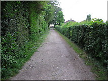TR3256 : View along footpath to Felderland Lane by Nick Smith