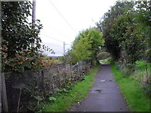 NS4274 : Footpath at Milton by PAUL FARMER